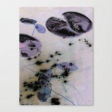 Lilypad 2 Canvas Print