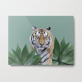 Tiger beteen agave Leaves Metal Print