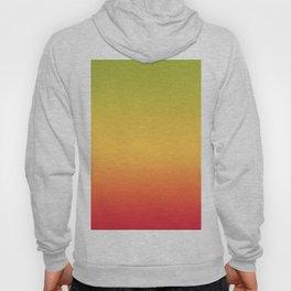 Tropical Colorful Gradient Pattern Hoody