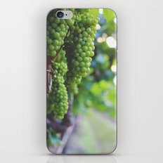 Drink More Wine in Napa iPhone & iPod Skin