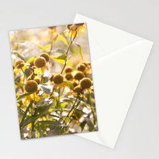 Flowers in Mt. Rogers, Virginia Stationery Cards