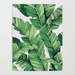 Tropical banana leaves V Poster