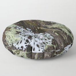 Moss and Fungi on a Forest Tree Floor Pillow