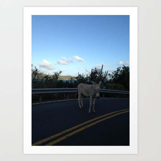 Jack ass, in the Road Art Print