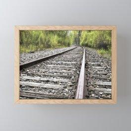 A Track Through The Woods Framed Mini Art Print