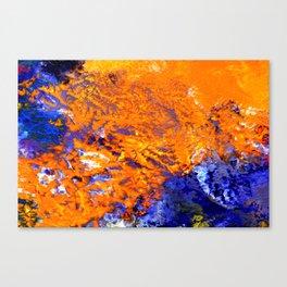 Ningaloo Canvas Print