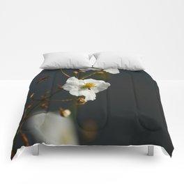 Swamp Beauty Comforters