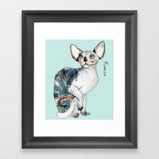 Romeo the sphynx Framed Art Print