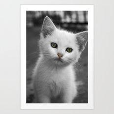 Dreamy Kitty Art Print