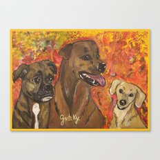 Dogs Bailey , Jake & Maggie Canvas Print