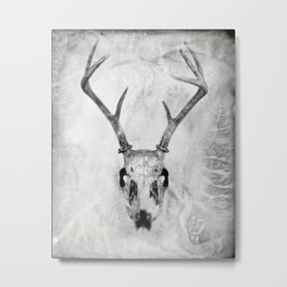 Whitetail Deer Skull (Buck) - 8x10 Tintype Photo Metal Print