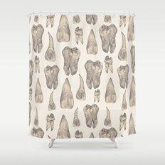 Teeth Shower Curtain
