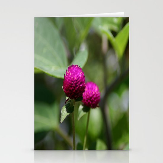 Encroachment Stationery Cards