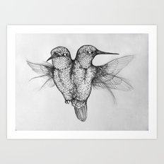 Conjoined Hummingbirds Art Print