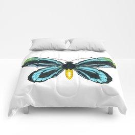 Queen Alexandra' s birdwing butterfly Comforters