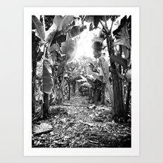 Banana Walk Art Print
