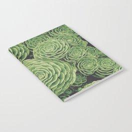 Succulents | Garden Plants Notebook