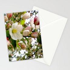 Spring Forward Stationery Cards