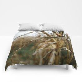 Autumn Cornstalk II Comforters