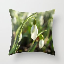 Snowdrops in the Woods Throw Pillow