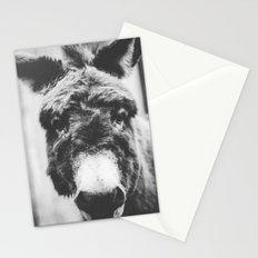 Finnegan Stationery Cards