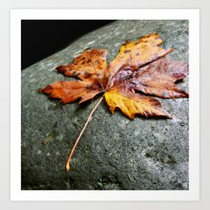 Leaf & Stone Art Print