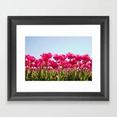 Tulips in Bloom! Framed Art Print