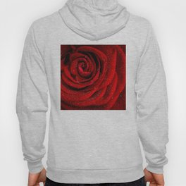 Red rose with sparkling droplets - Beautiful elegant Roses Hoody