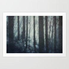 Glass Light Forest Art Print