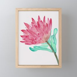 Watercolour King Protea Painting Framed Mini Art Print