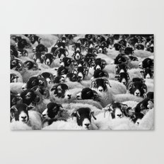 ABSTRACT PATTERN / MONOCHROME HERD Canvas Print