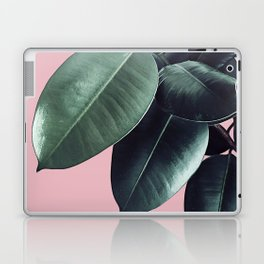 Ficus Elastica #14 #CoralBlush #decor #art #society6 Laptop & iPad Skin