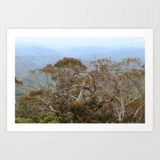 Australiana No. 3 Art Print