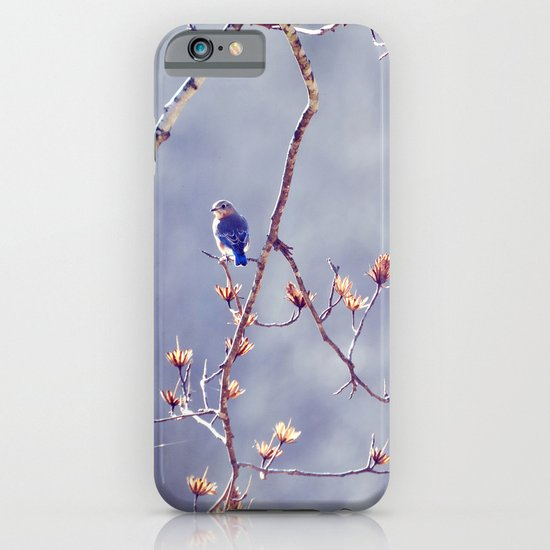 A Bluebird for Isabelle iPhone & iPod Case