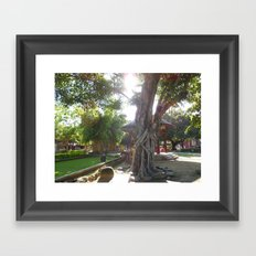 Fairy in the sunshine Framed Art Print