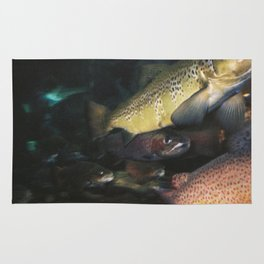Swimming Upstream Rug