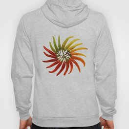 Charleston Hot Peppers Color Wheel Hoody