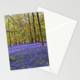 Bluebells Bluebell Woods Greys Court Stationery Cards