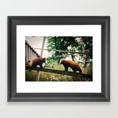 Stand off Framed Art Print