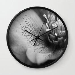 Conservatory Proprietor Wall Clock