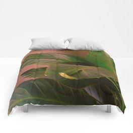 Passionz Comforters