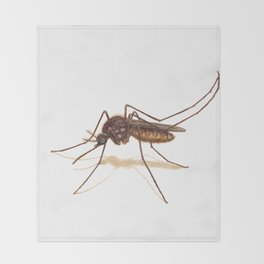 Mosquito by Lars Furtwaengler | Colored Pencil / Pastel Pencil | 2014 Throw Blanket