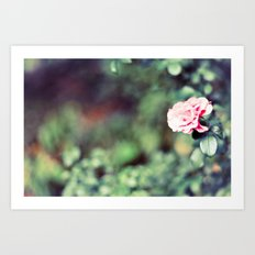 The flowers bloom for You Art Print
