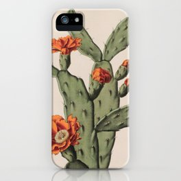 Botanical Cactus iPhone Case