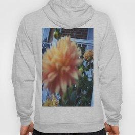 flowers 2015 Hoody