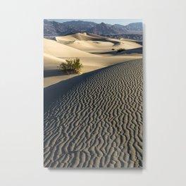 Sandy Tableau Metal Print