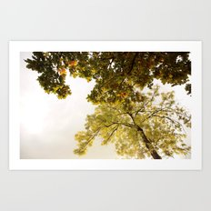 This fall with dreams Art Print