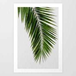 Palm Leaf I Art Print