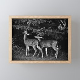 Two Fawns Framed Mini Art Print
