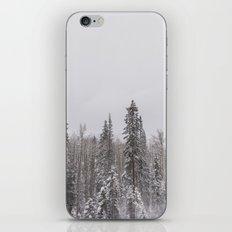 Aspen iPhone & iPod Skin